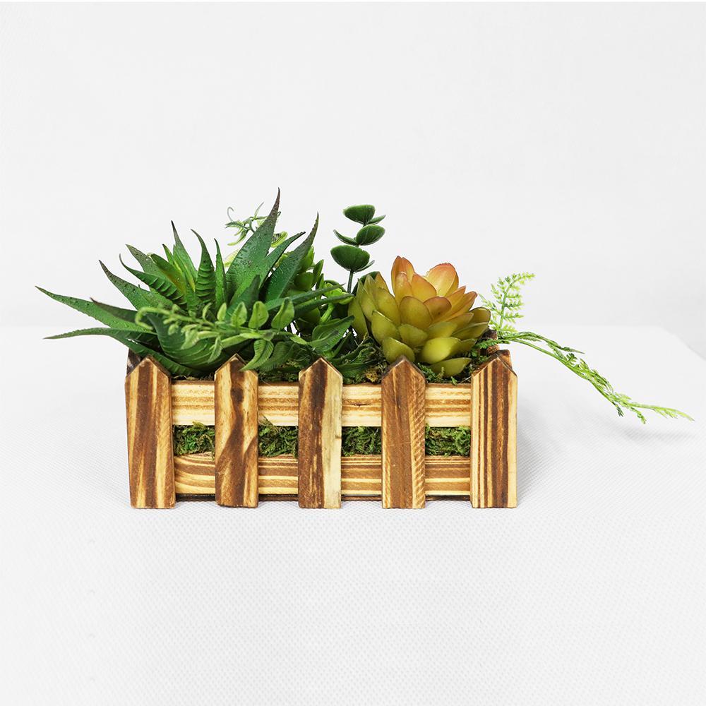 6 in. Indoor Artificial Succulents in Desk Top Wood Planter