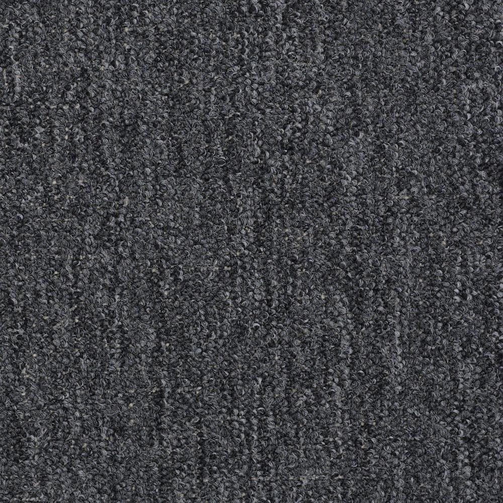 Trafficmaster Carpet Sample Viking Color Stingray Loop