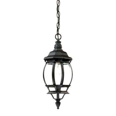Chateau Collection 1-Light Matte Black Outdoor Hanging Lantern