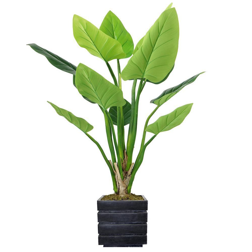 51 in. Philodendron Erubescens Green Emerald in Fiberstone Planter