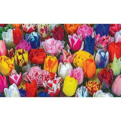 Spring Flowering Bulb Mixture (250-pack)