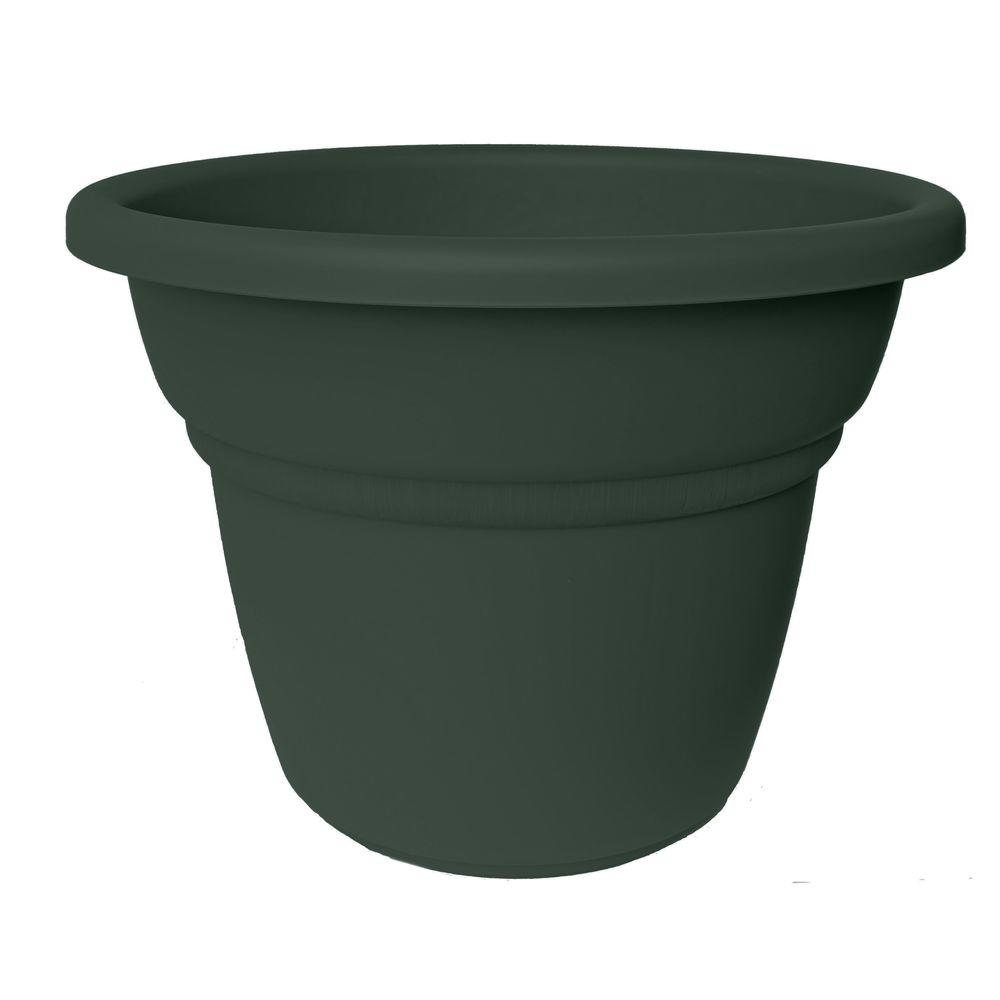 Bloem 20 in. Midsummer Night Plastic Milano Planter