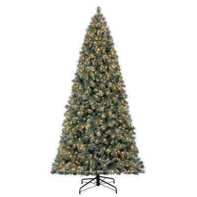 12 ft. Pre-Lit LED Sparkling Amelia Pine Artificial Christmas Tree with 1300 Warm White Micro-Dot Lights