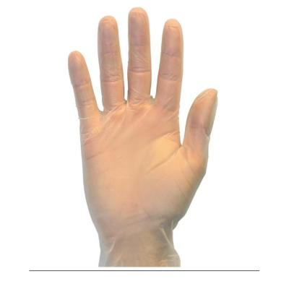 Medium Clear Powder Free Standard Vinyl Glove (100-Count)