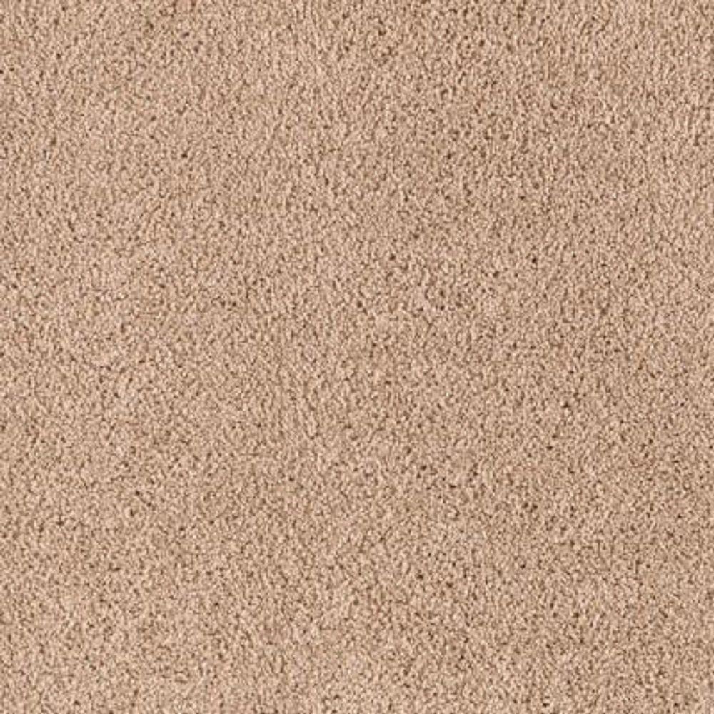 Lifeproof Carpet Sample Barons Court Ii Color