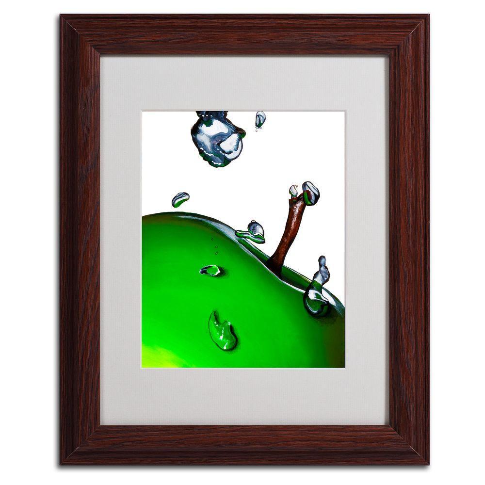 Trademark Fine Art 11 in. x 14 in. Granny Splash II Framed Matted Art