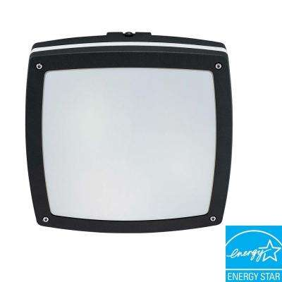 Wall/Ceiling 2-Light Outdoor Matte Black Square Fixture