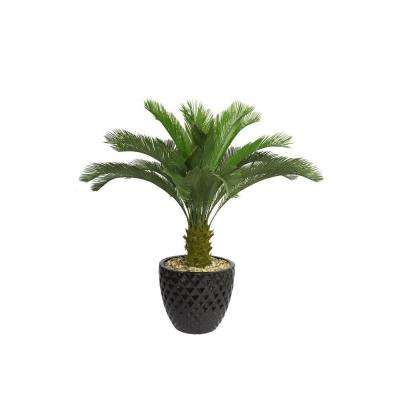 54 in. Tall Cycas Palm Tree in 16 in. Fiberstone Planter