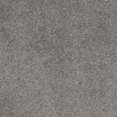 Carpet Sample - Coral Reef II - Color Earthly Gray Texture 8 in. x 8 in.