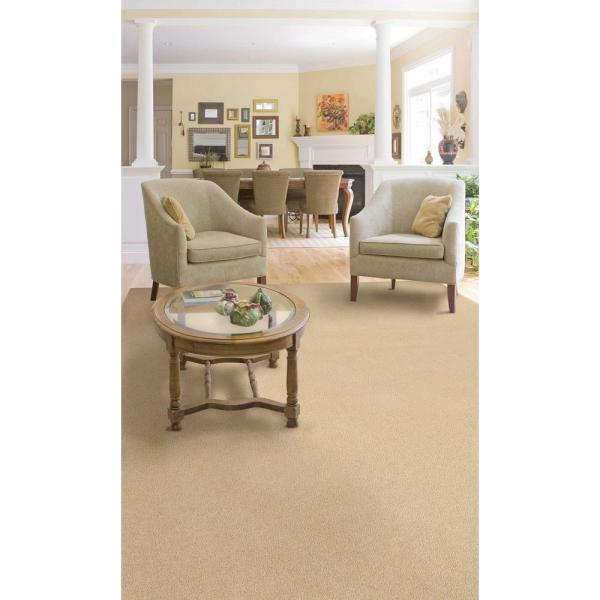 Natco Plush Natural 8 Ft X 12 Ft Bound Carpet Remnant Spn812 The Home Depot
