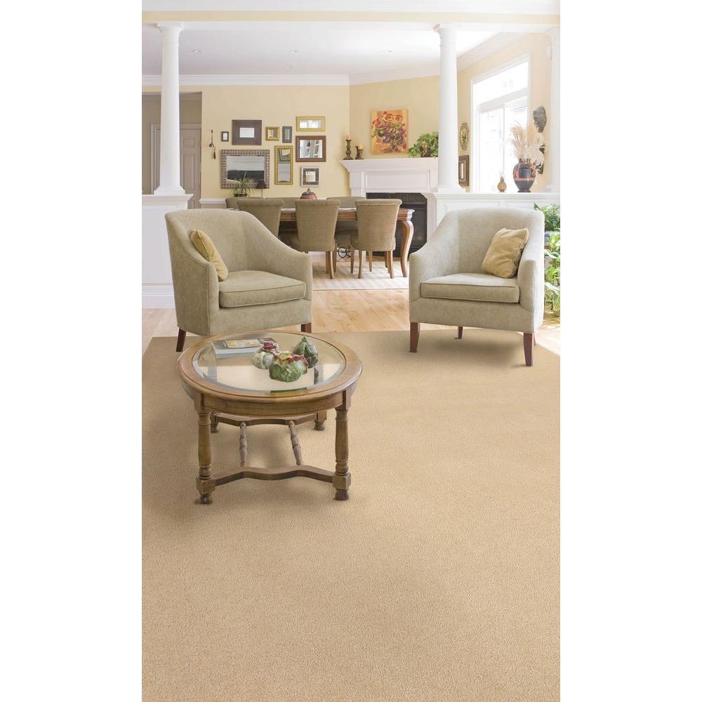 Plush Natural 8 ft. x 12 ft. Bound Carpet Remnant