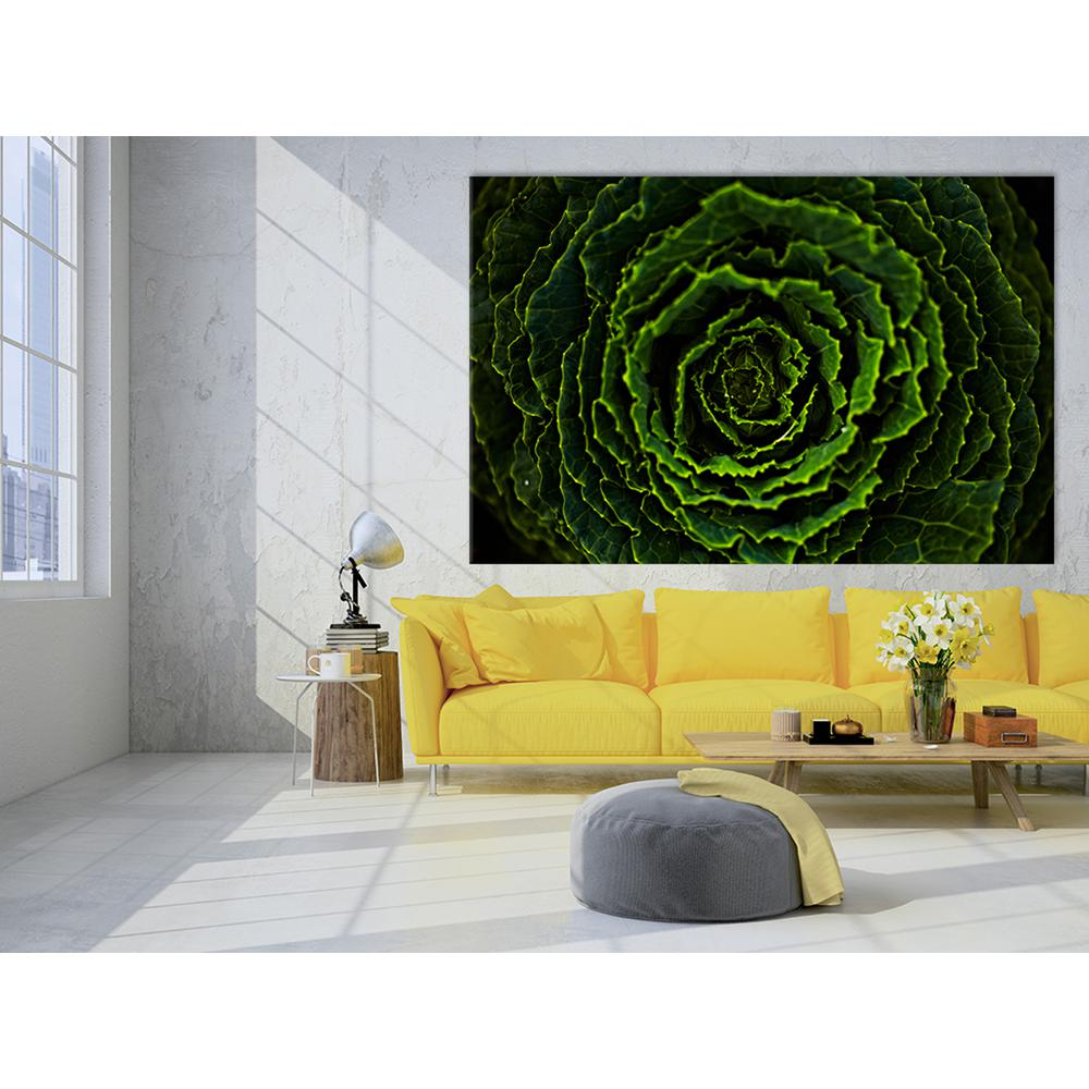 "48 in. x 72 in. ""Cabbage II"" by Peter Morneau Printed"