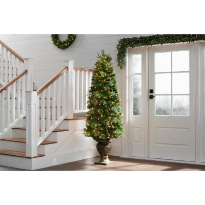 6.5 ft Paces Hill Pine Potted Pre-Lit Artificial Christmas Tree with 200 White Lights