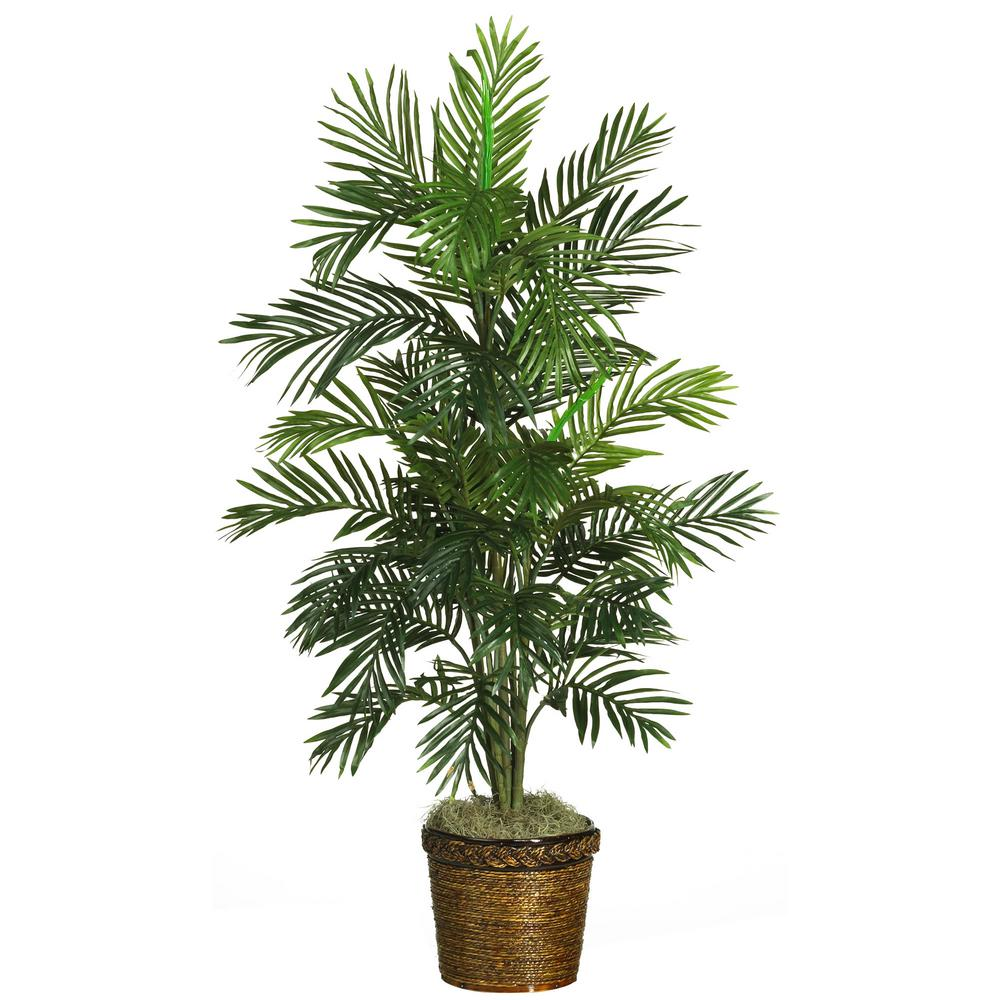 2 ft. Areca Palm Silk Tree with Basket