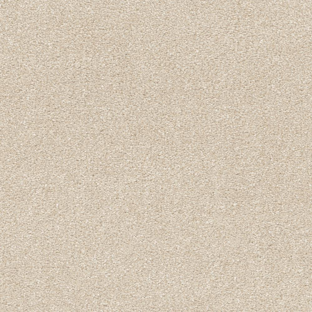 Home Decorators Collection Perfected II - Color Polished Texture 12 ft. Carpet