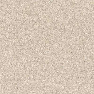 Perfected II - Color Polished Texture 12 ft. Carpet