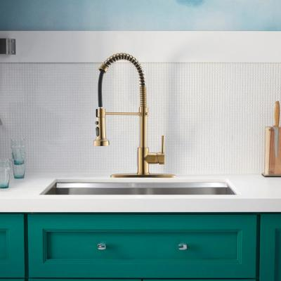 Contemporary Single-Handle Gooseneck Pull-Down Sprayer Kitchen Faucet in Brushed Gold