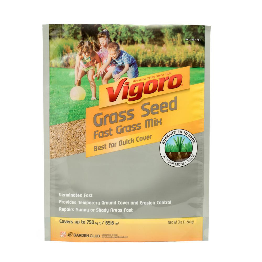 3 lb. Fast Grass Seed Mix