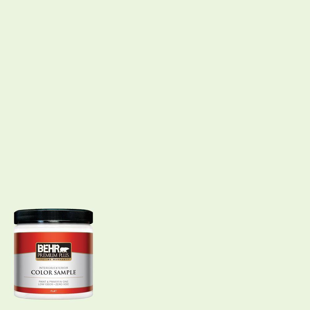 8 oz. #430C-1 White Willow Interior/Exterior Paint Sample