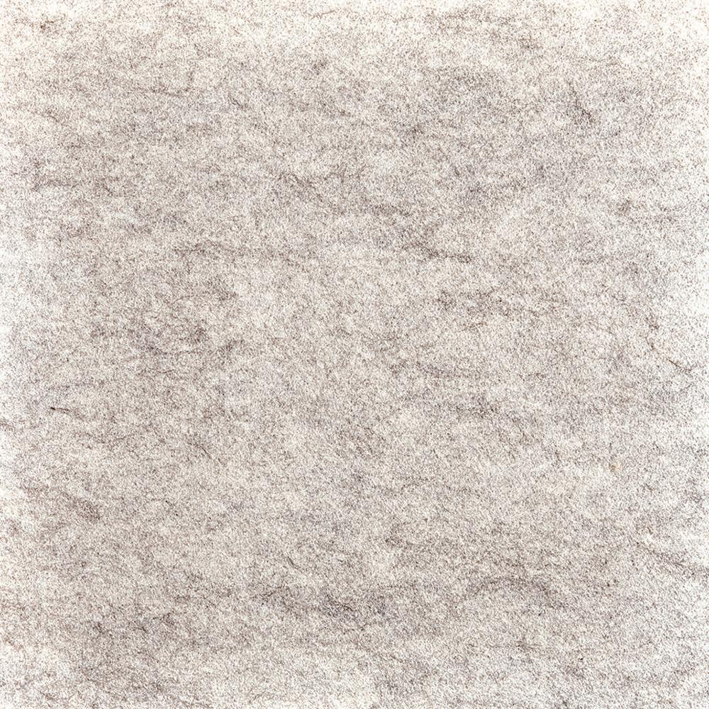 Fedora Oatmeal Texture 19.7 in. x 19.7 in. Carpet Tile (6