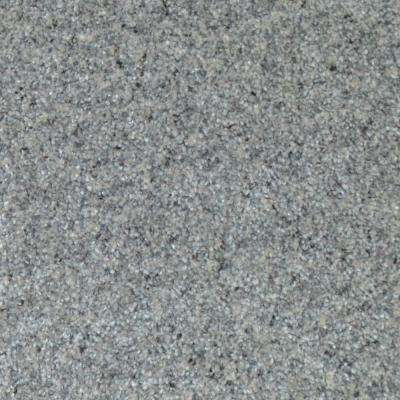Carpet Sample - All The Best II - Color Stockton Texture 8 in. x 8 in.