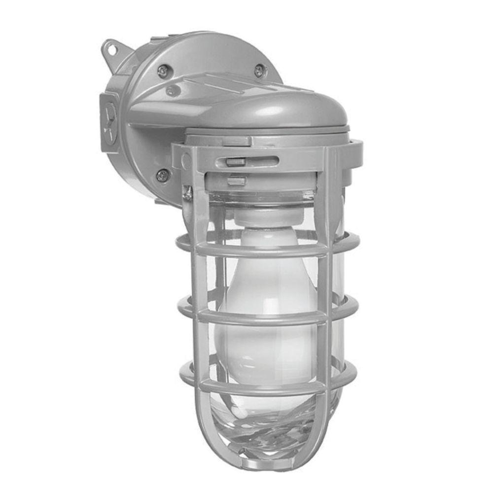 Carlon 150-Watt Ceiling and Wall Lantern Sconce Metal Cage Globe Light