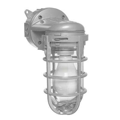 150-Watt Ceiling and Wall Mount Metal Cage Globe Light