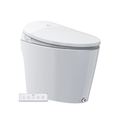 Discovery Elongated Smart Toilet Bidet System in White with Auto Open, Heated Seat, Air Dryer