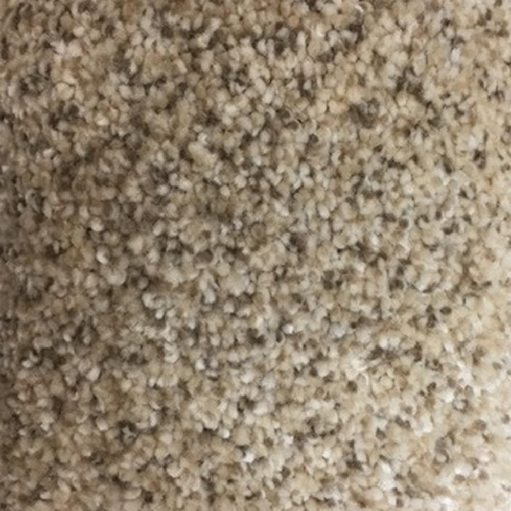 Home Decorators Collection Spicework I Color Albany Texture 12 Ft Carpet H5083 8408 1200