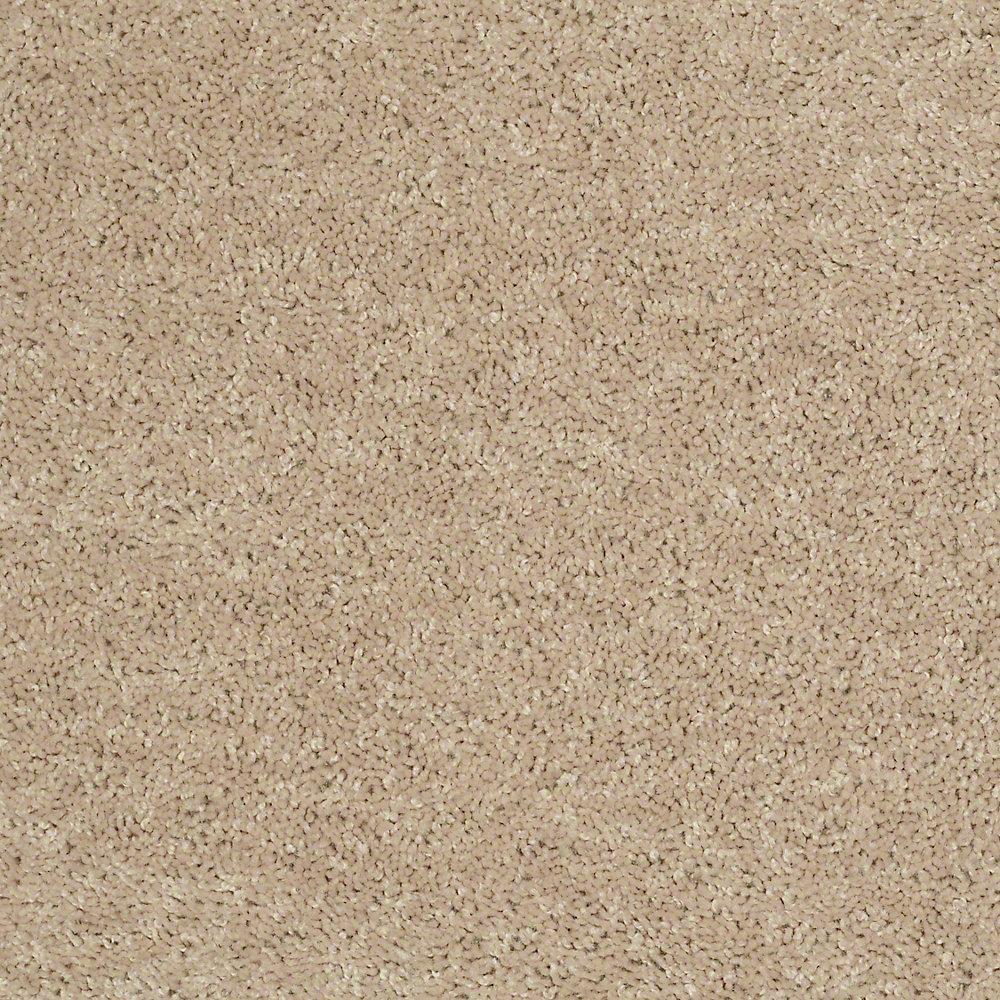 Trafficmaster Carpet Sample Palmdale I 12 In Color