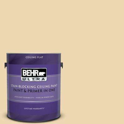 1 gal. #PPU6-11 Hummus Ceiling Flat Interior Paint and Primer in One