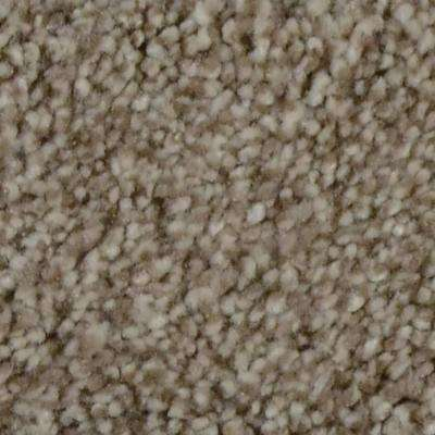Autumn Charm - Color Maplecrest Texture 12 ft. Carpet(1080 sq. ft. / Roll)