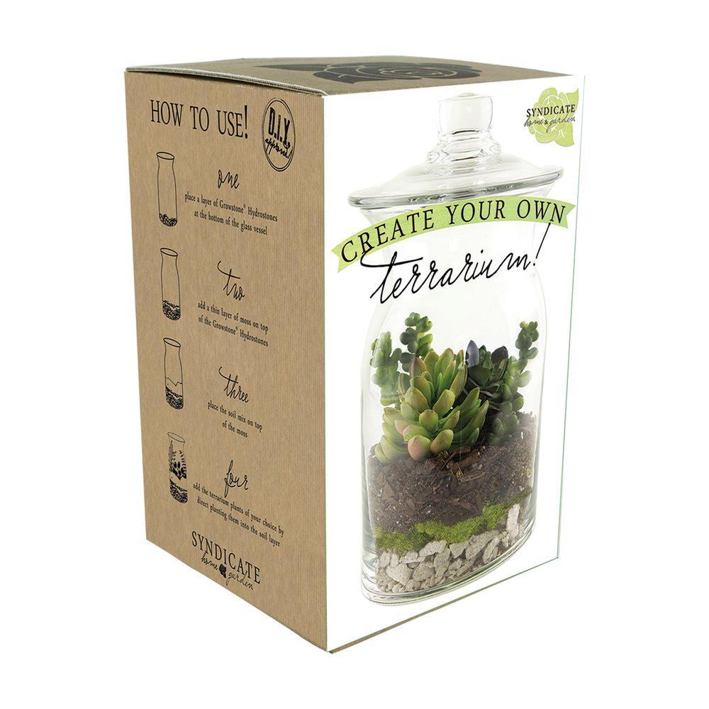 Syndicate Home Garden Diy 8 In Terrarium Kit 100 06 00 The Home Depot