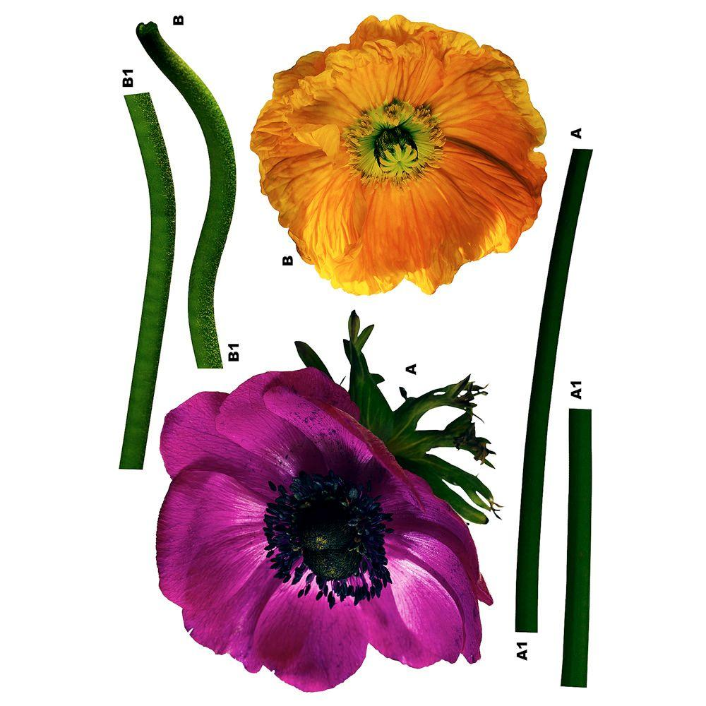 Freestyle 19 in. x 27 in. Anemone daisy Wall Decal