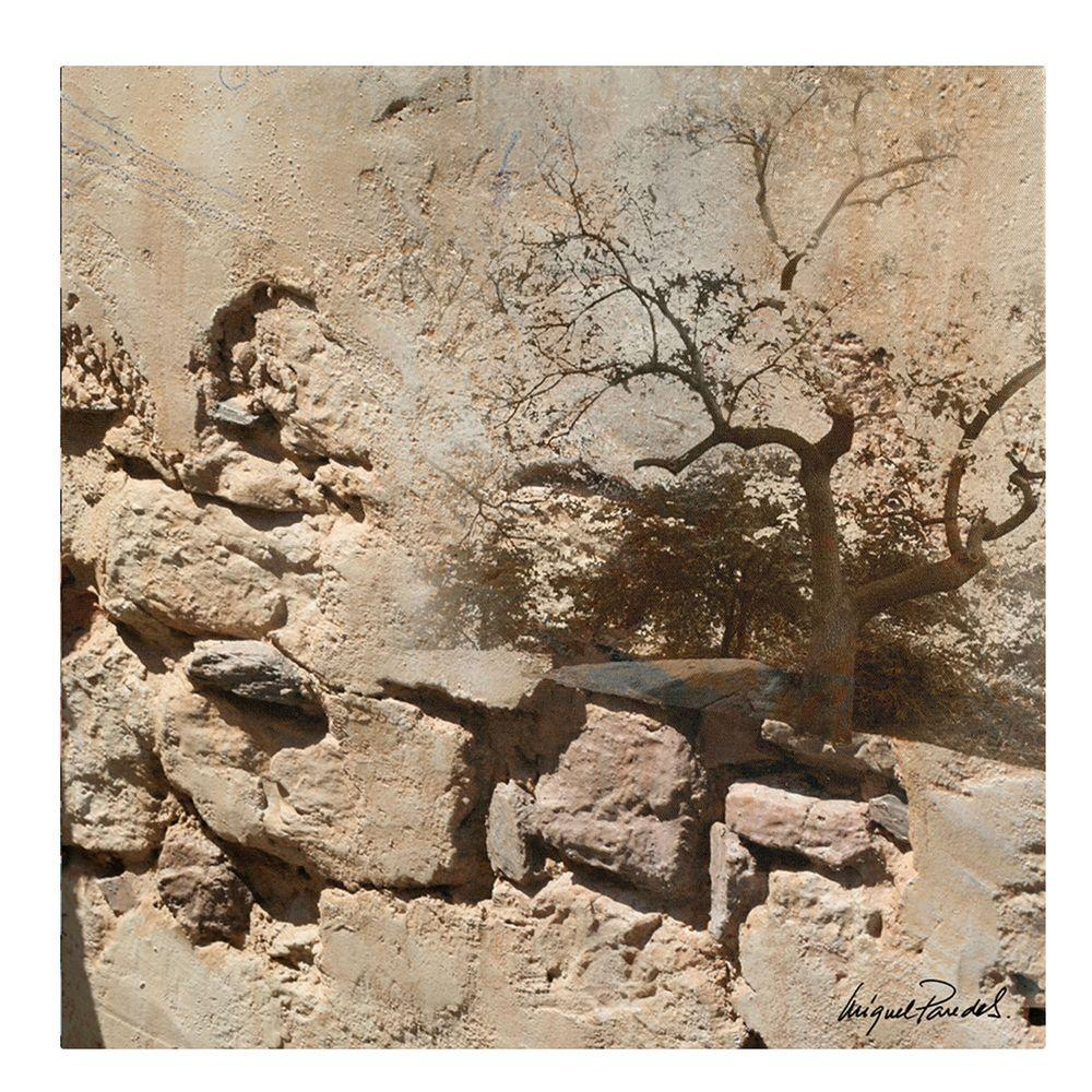 18 in. x 18 in. Rock and Tree Canvas Art