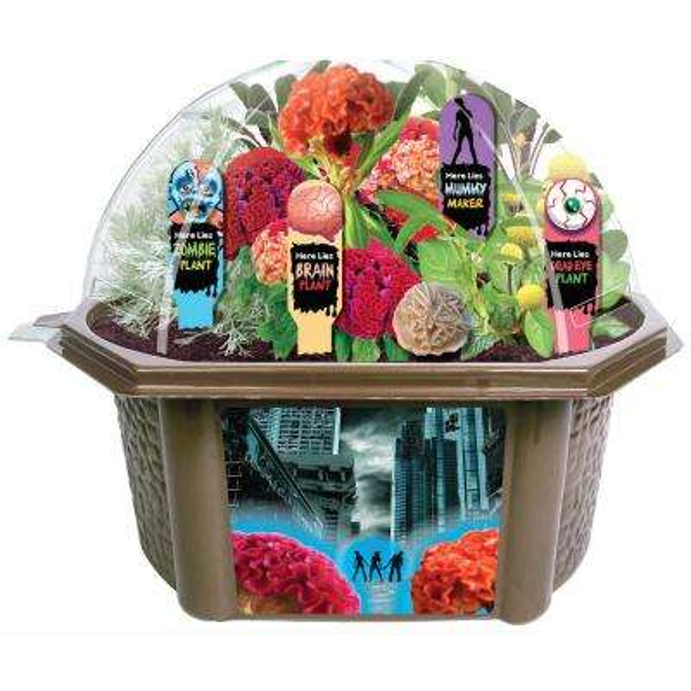 Biosphere Clear Plastic Zombie Apocalypse House of Horrors Indoor Garden Terrarium Indoor Garden Seed Starter Kit