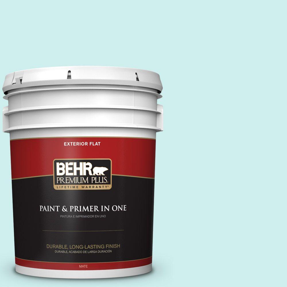 BEHR Premium Plus 5-gal. #510C-1 Ionic Sky Flat Exterior Paint