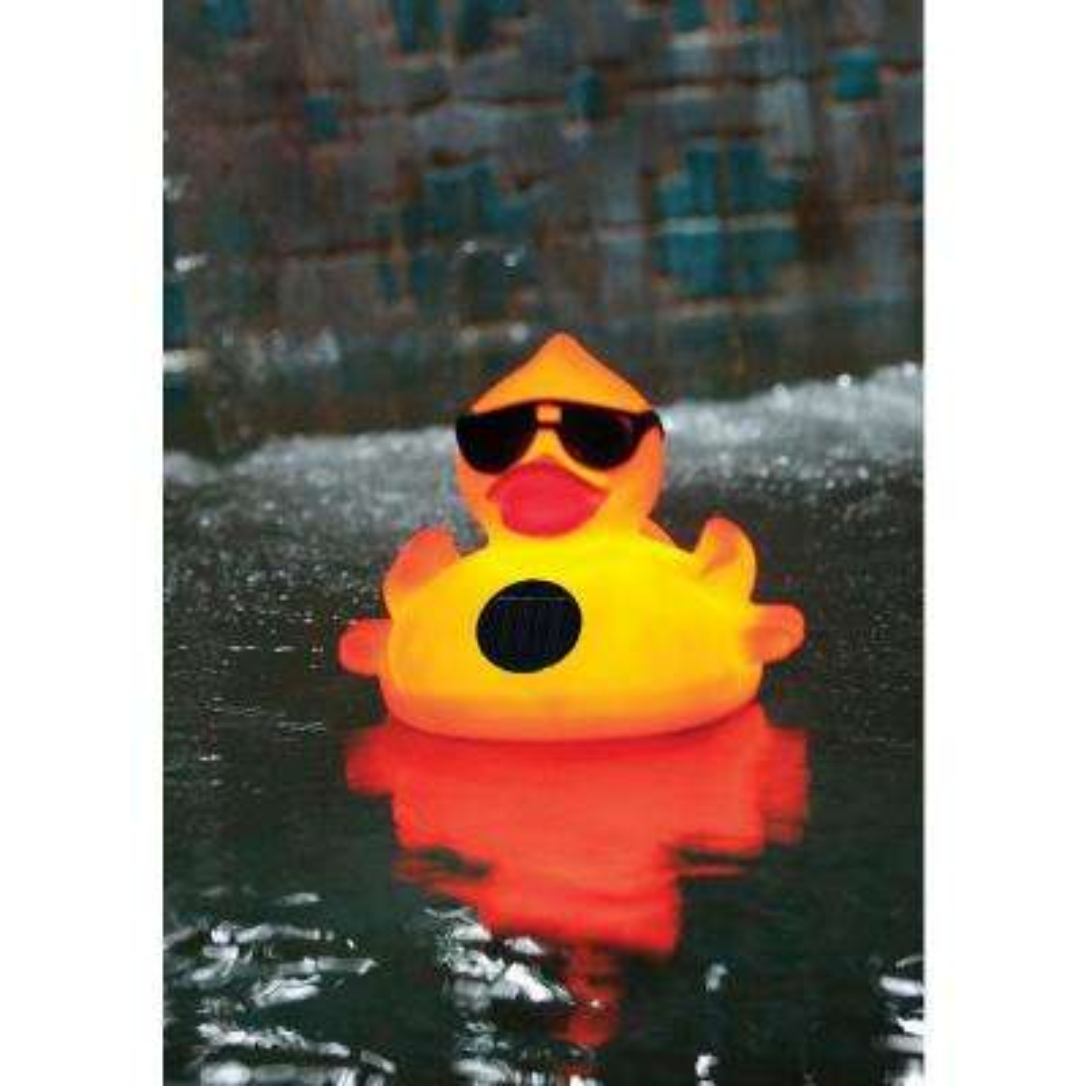 Solar Light-Up Derby Duck Pool Chlorinator