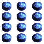 Blue Submersible LED Lights (Box of 12)