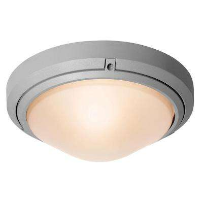 Oceanus 1-Light Satin Outdoor Flush/Wall Mount with Frosted Glass Shade