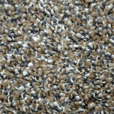 Carpet Sample - Unstoppable - Color Dulles Texture 8 in. x 8 in.