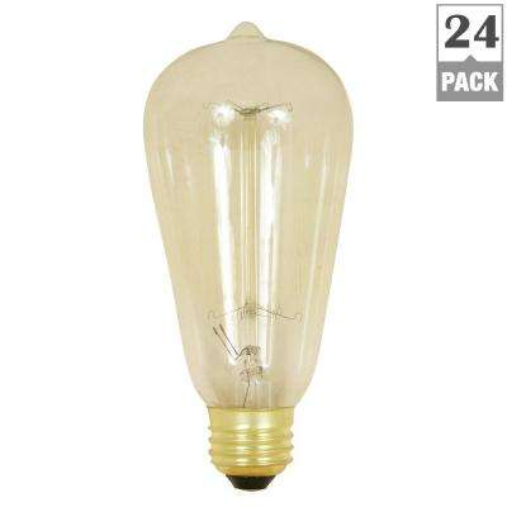 60-Watt Soft White ST19 Incandescent Original Vintage Style Light Bulb (Case of 24)