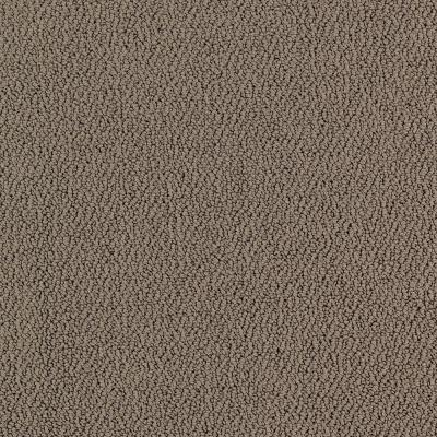 Lifeproof Lower Treasure Color Magnetic Pattern 12 Ft Carpet 0547d 28 12 The Home Depot