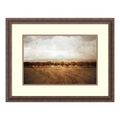 """The Olive Grove"" by Heather Jacks Framed Wall Art"