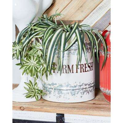 "Distressed White Iron and Wood Planters with ""Farm Fresh"" Texts (Set of 2)"
