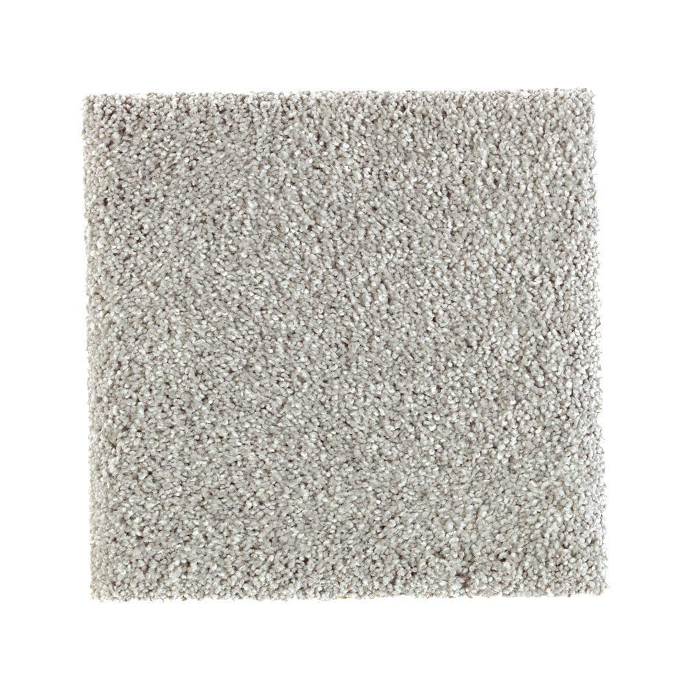 Petproof carpet sample whirlwind ii color navigator for Pet resistant carpet