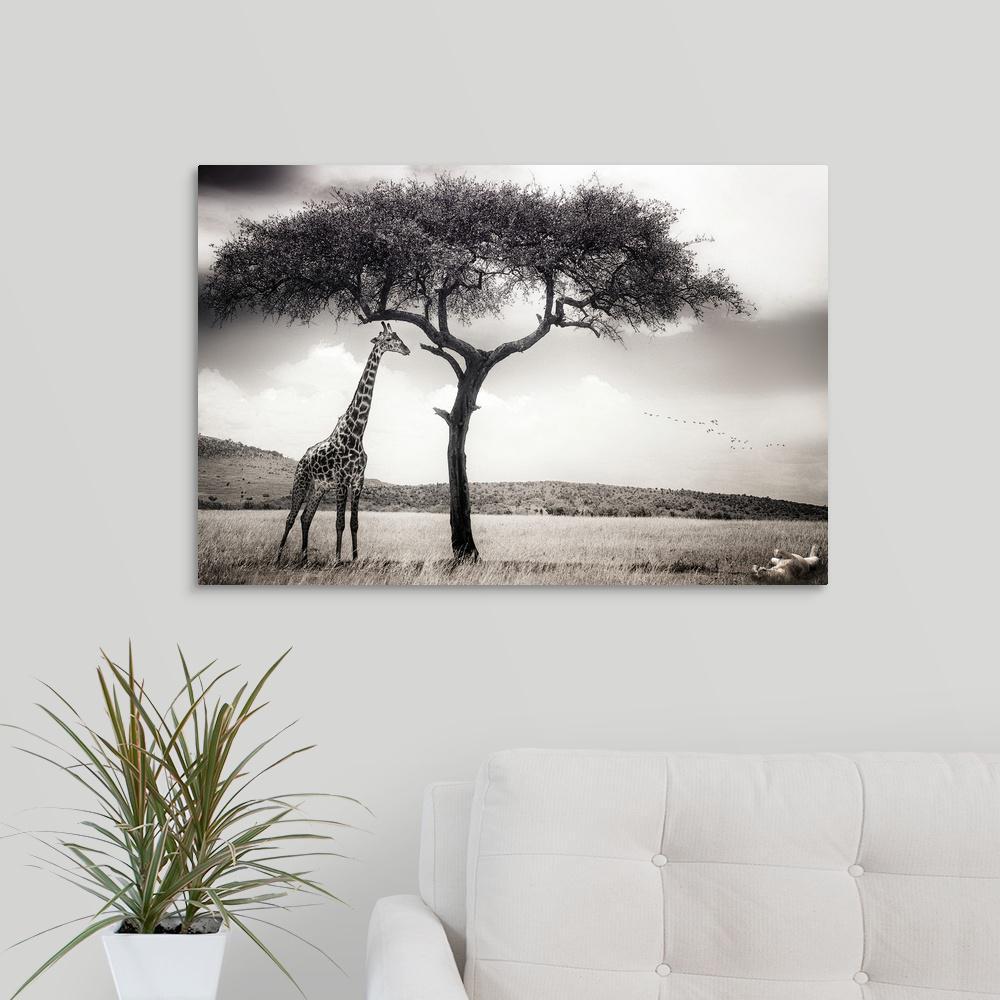 Under the african sun by piet flour canvas wall art 2352535 24 30x20 the home depot