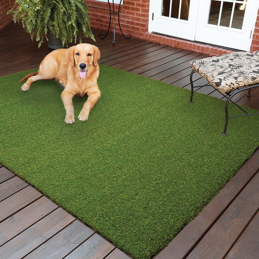 Pet 3.75 ft. x 9 ft. Green Artificial Grass Runner