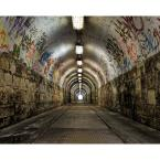 Graffiti Tunnel Wall Mural
