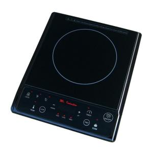 Single Burner 7.25 in. Black Induction Hot Plate with Temperature Control